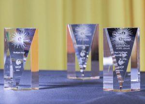 Luminary Award